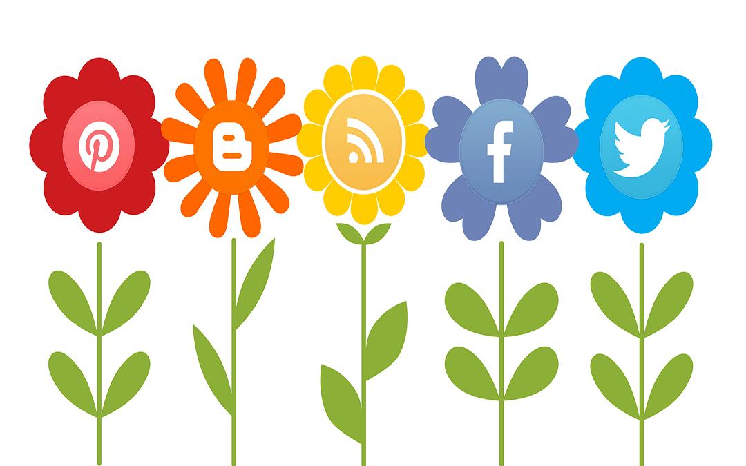 2019 Guide to Social Media Marketing For Enterprise Businesses